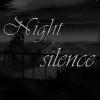 Ночная тишина